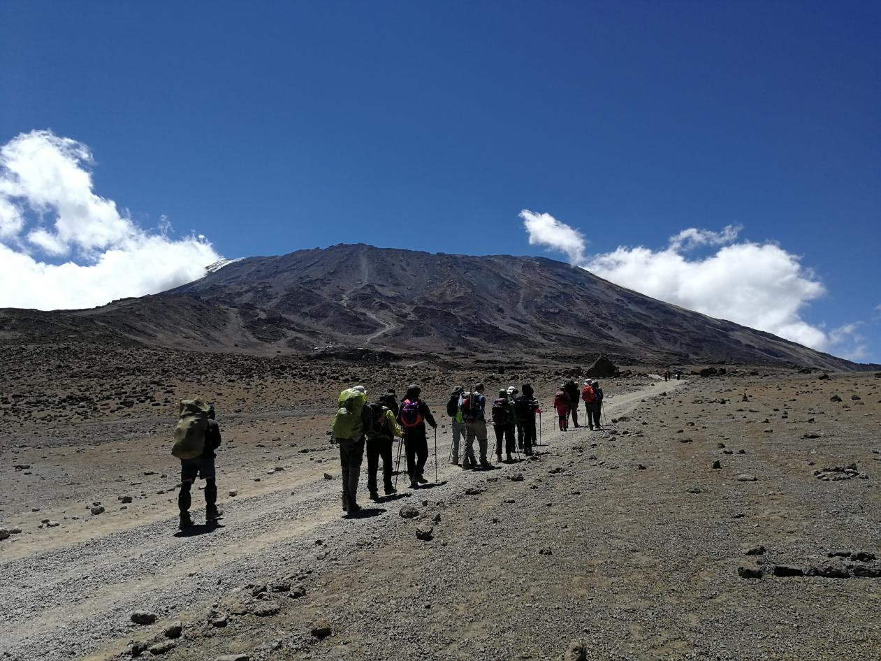 非洲最高峰乞力马扎罗攀登,狂野动物游猎,马赛人部落探访
