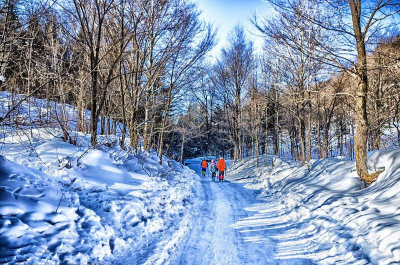 雪谷雪乡深度穿越,这个冬天去雪地里撒点野