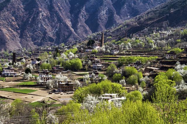 藏寨玉雨,金川阳春梨花丹巴藏寨,四姑娘山深度行摄,徜徉花间,寻一抹春日绚烂的阳光