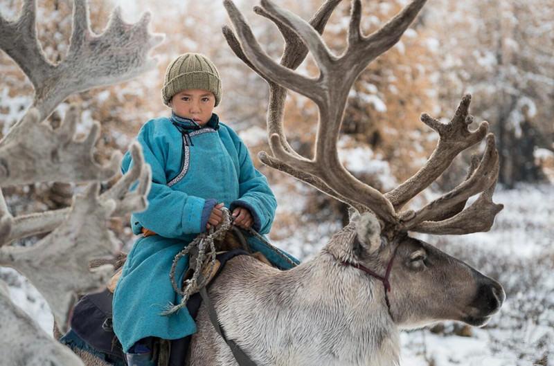 地球上最后的驯鹿民族摄影之旅