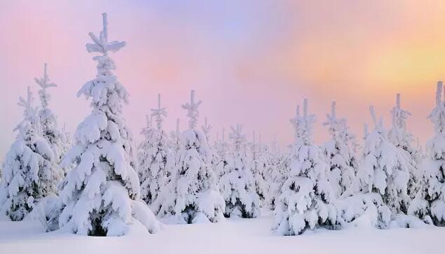 雪乡两日行程,让你体验雪乡魅力