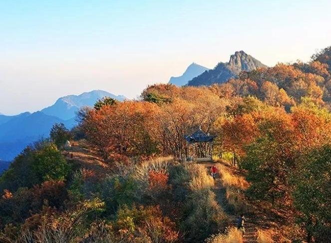 赏秋景       活动亮点           活动介绍      梨木台自然风景区地