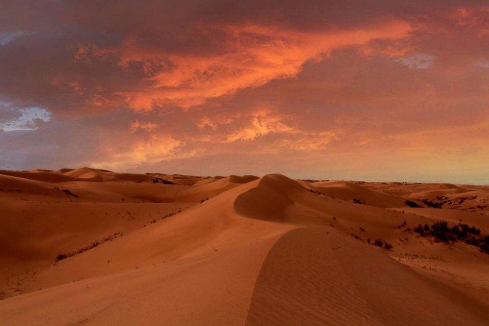 长春站 ,荒野沙漠放纵行,燥动青春沙柔情