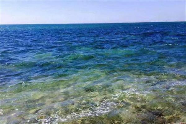 东戴河 看日出日落 拾贝壳 摸海星 抓螃蟹 吃海鲜