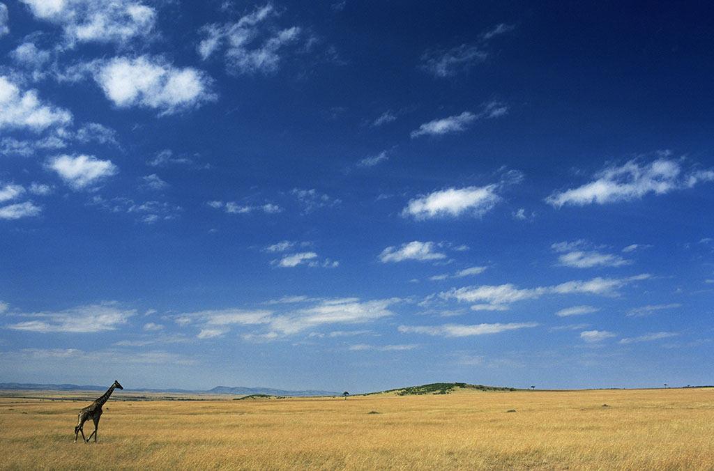 背景 壁纸 草原 风景 天空 桌面 1024_676