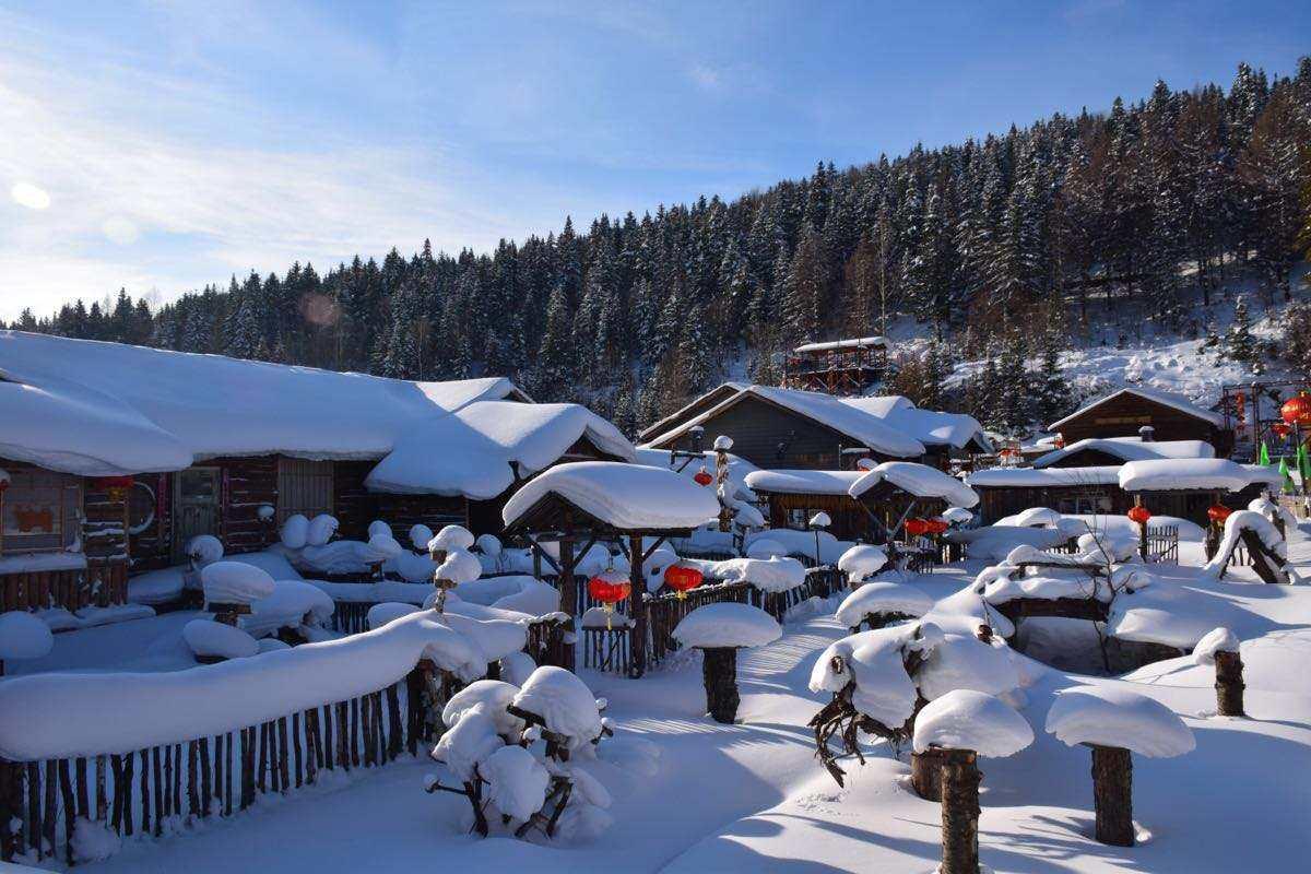带娃去童画雪乡过梦幻之冬,体验激情滑雪,乘坐马拉爬犁,大闹土匪窝