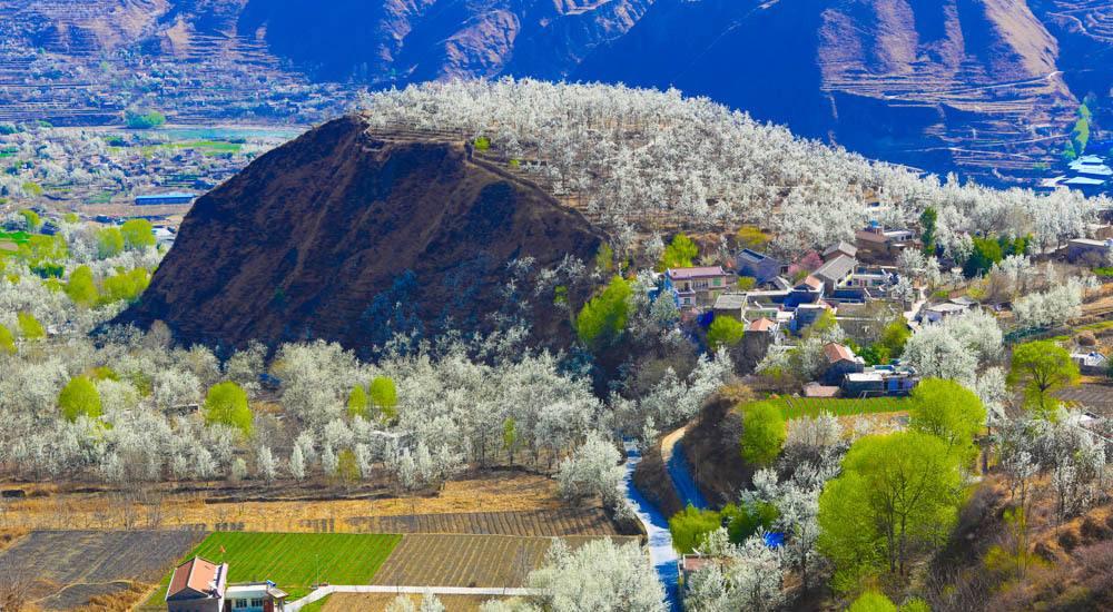 金川河谷赏万亩梨花,丹巴藏寨了藏家风情,四姑娘山脚下双桥沟的迷人秘境