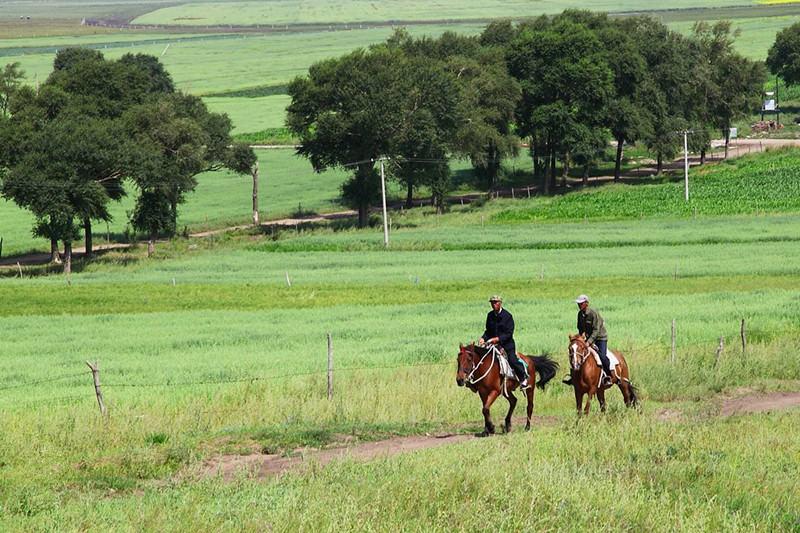 策马的激情,摩托的冲动,让我们情定草原,丰宁坝上草原,期待大家的到来