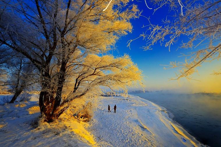 雾凇岛最冷的冬天,看最美的雪景!