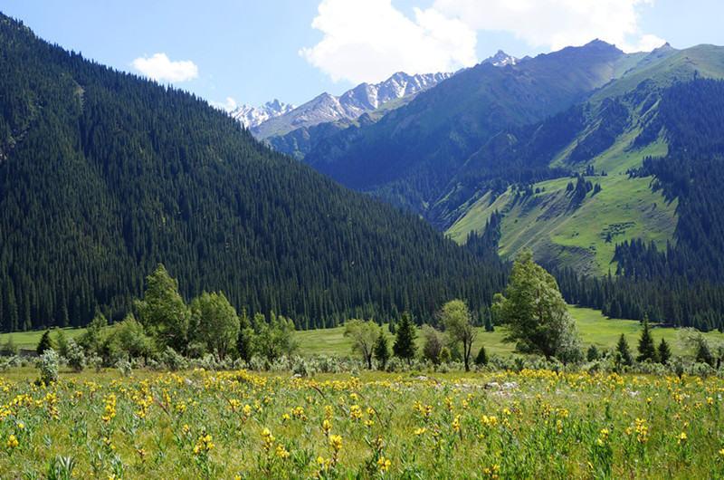 山道如歌,公路如画 守望天山最美独库公路北疆伊利环线行摄游