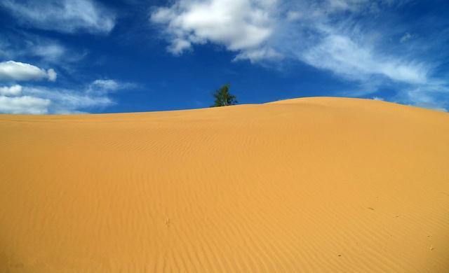 纵贯库布齐,沙漠极限挑战合集,徒步与赛车水火交融