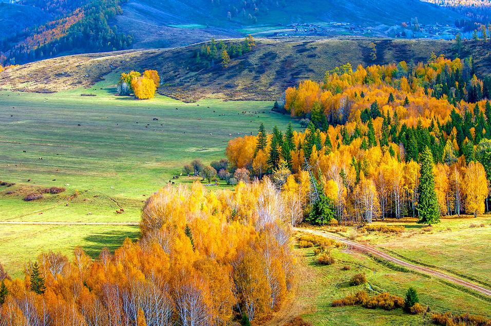 【国庆】北疆9日环线游- 秋天的童话