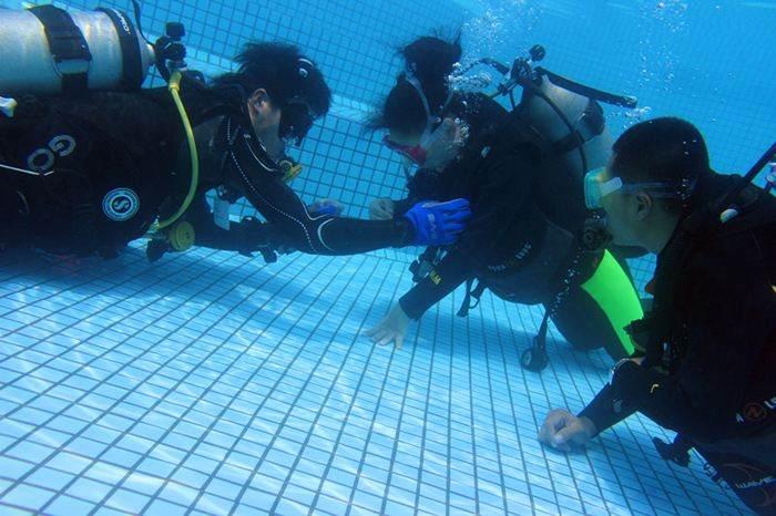 OW潜水证课程,专业教练专业机构,为你的潜水保驾护航