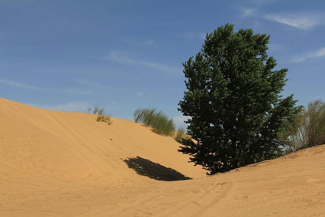 库布齐沙漠穿越东线,大漠黄沙挑战自我