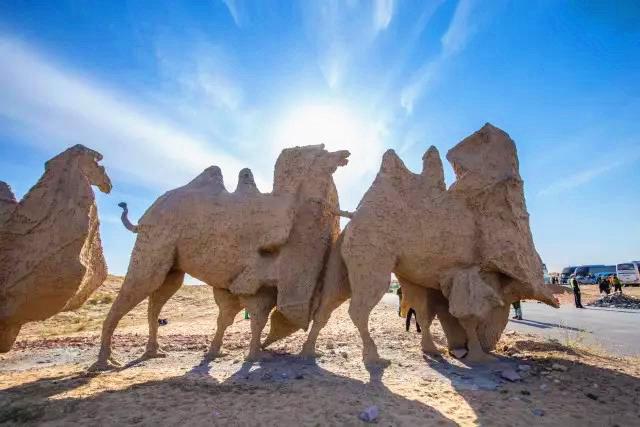 端午节奈曼沙漠露营