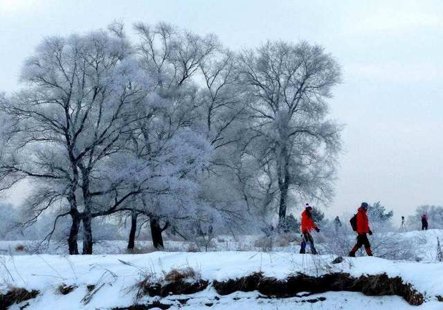 东北经典全线行摄,东升徒步穿越雪乡,长白山雾凇岛玩转大东北