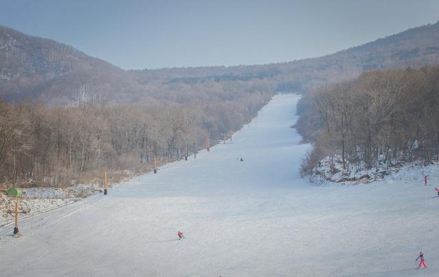 亞布力萬科雙次滑雪,雪鄉林海雪原穿越,行攝長白山魔界霧凇島