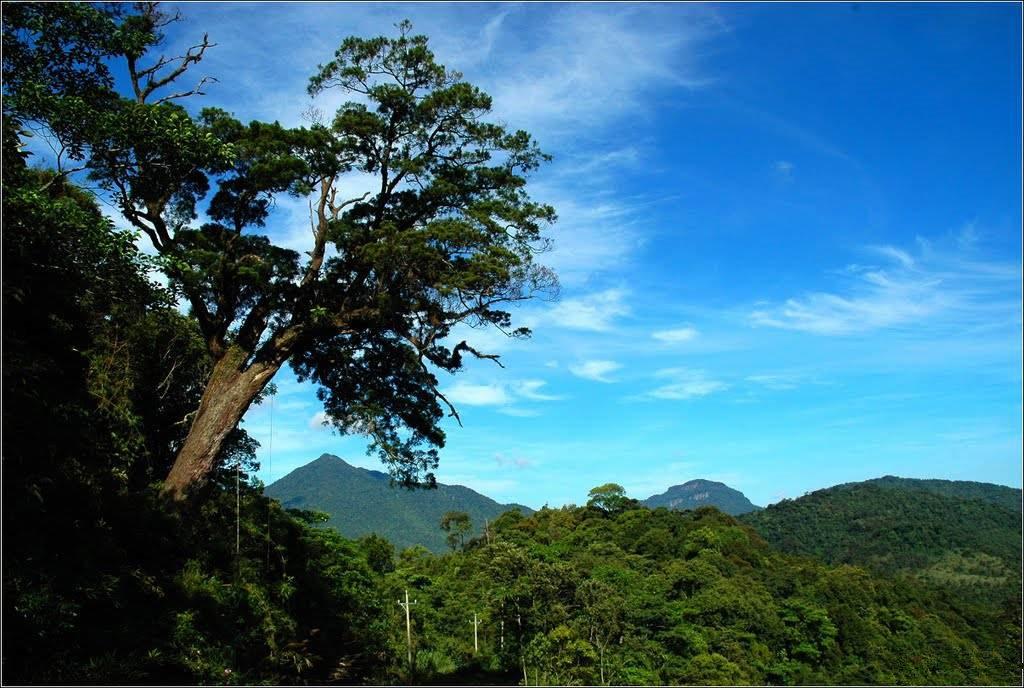 徒步琼中黎母山美丽景色,穿越亚洲热带雨林