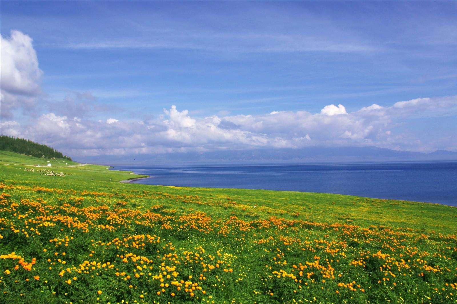 行摄赛里木湖日出日落,伊犁河谷、草原赏鲜花,眼观八百里火焰山