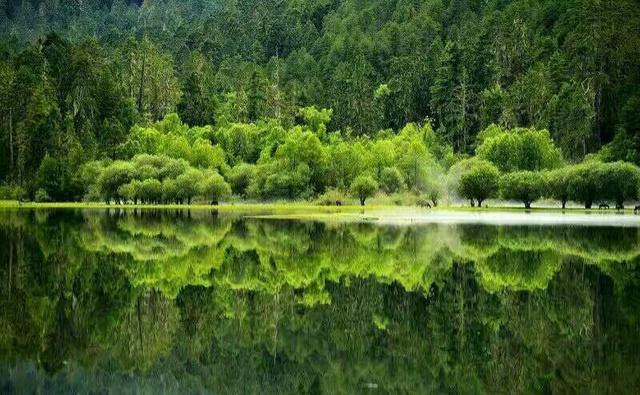 最美川藏318精华,鲁朗林海、雅鲁藏布大峡谷、巴松措,藏地秘境等你发现