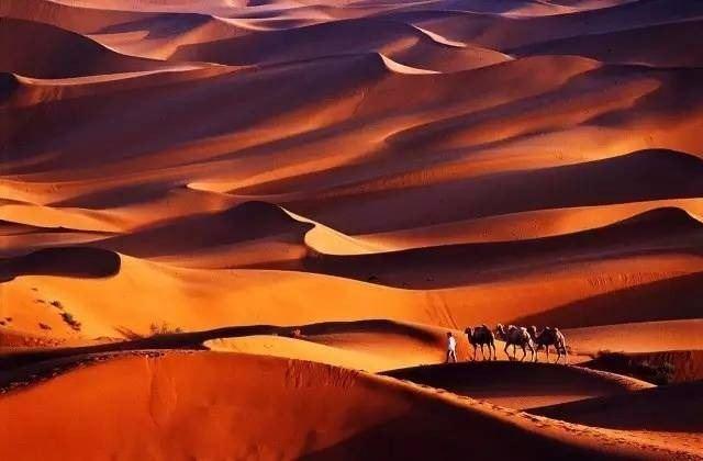 一起去沙漠,走一次心安之旅