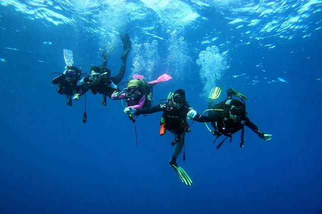 菲律宾薄荷岛开放水域潜水员(OW)课程,一张大海的通行证