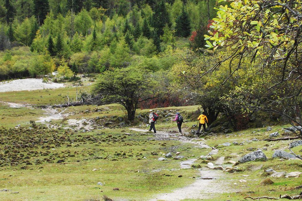 长坪沟毕棚沟穿越,四姑娘山脚下的经典徒步