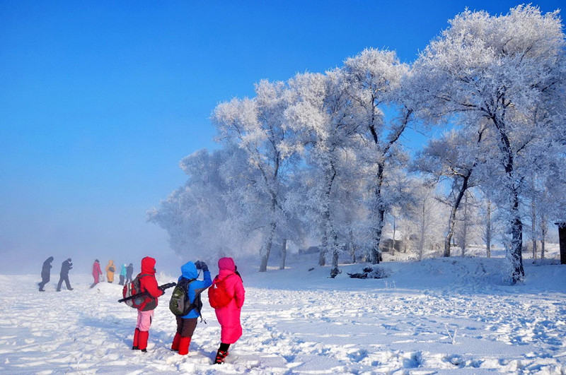 奇观雾凇岛,来一场高逼格滑雪,赏冰雪十里画廊,做客威虎寨
