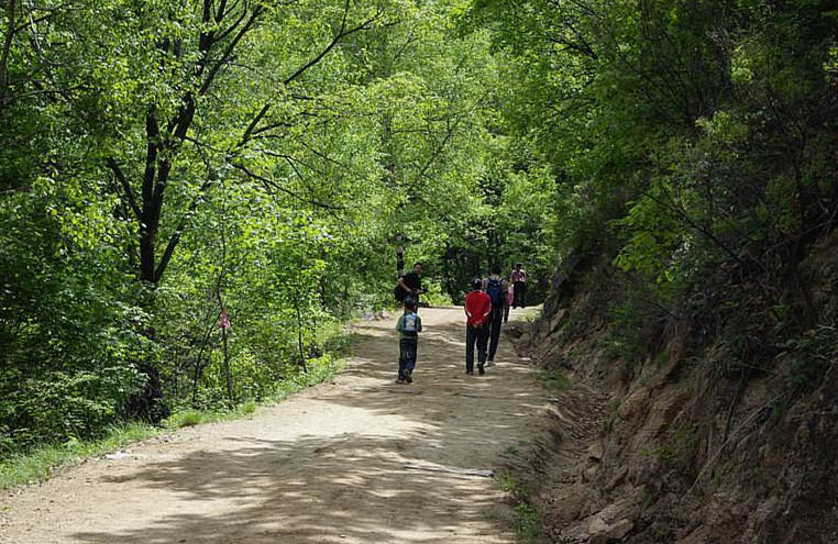 喇叭沟门原始森林徒步,登南猴岭赏高山杜鹃