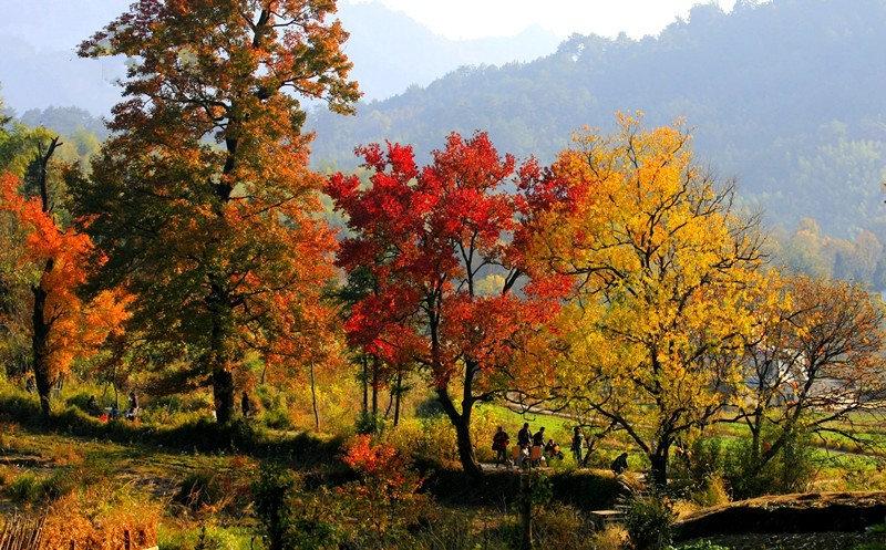 住农家屋,体验农家生活,原生态的原始村落长溪村是您亲近大自然,摄影