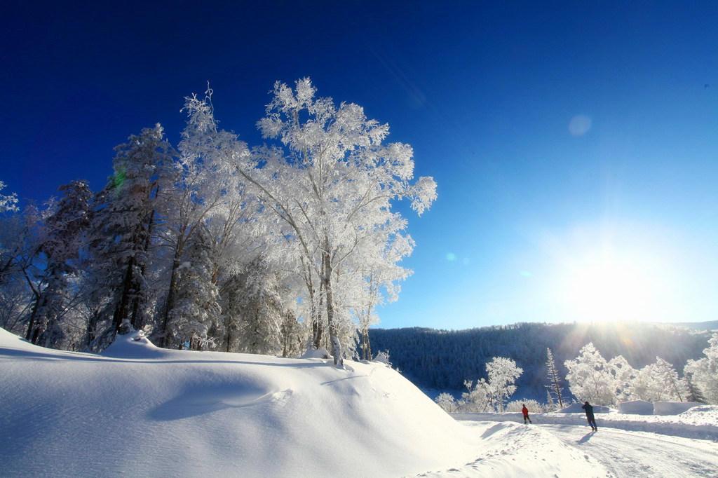 哈尔滨东升穿越雪乡,赏最美雪国风光