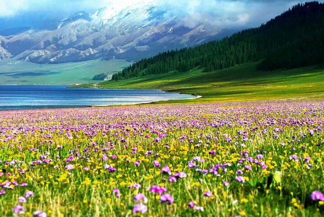 行摄赛里木湖喀拉峻草原特克斯八卦城,赏一场天山美景盛宴