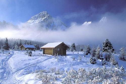 冬天漠河风景图片