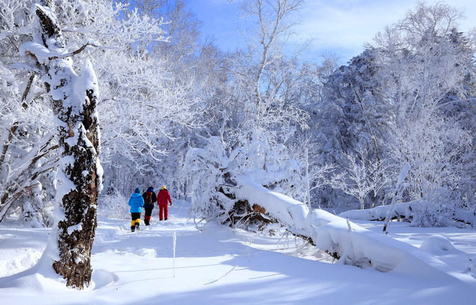 走进童话世界哈尔滨雪乡、长白山雾凇岛