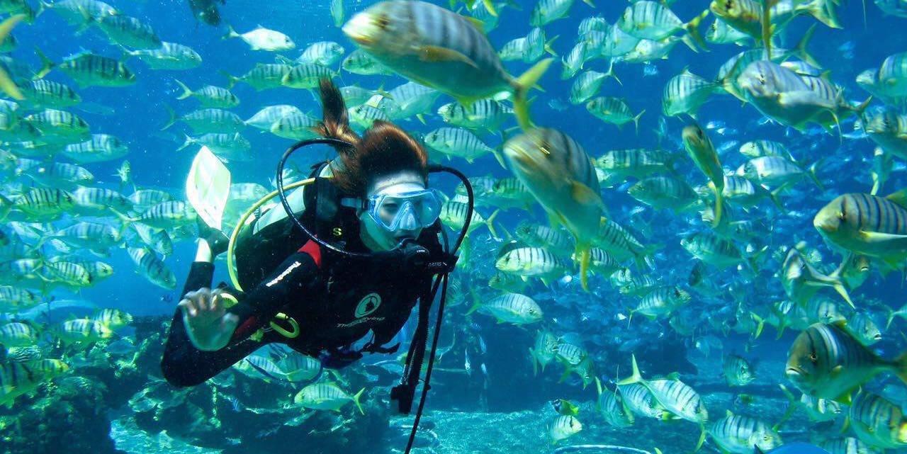 坐帆船出海喽,碧海波涛扬帆起航,站在船头或者坐在船沿边,和着海风,飘荡在大海中;如果浪大,那就接受风浪的洗礼吧,湿身什么的你准备好了吗? 如果这些都还不够,换上装备,直接在海上浮潜吧,带着面罩趴在水面,水下的珊瑚你看清楚了吗?鱼儿有几种颜色? 穿上潜水服背上氧气瓶去看看鱼儿的海底世界吧,深海潜水、摩托艇、香蕉船、冲锋舟这些刺激的海上运动一样儿也不能少!