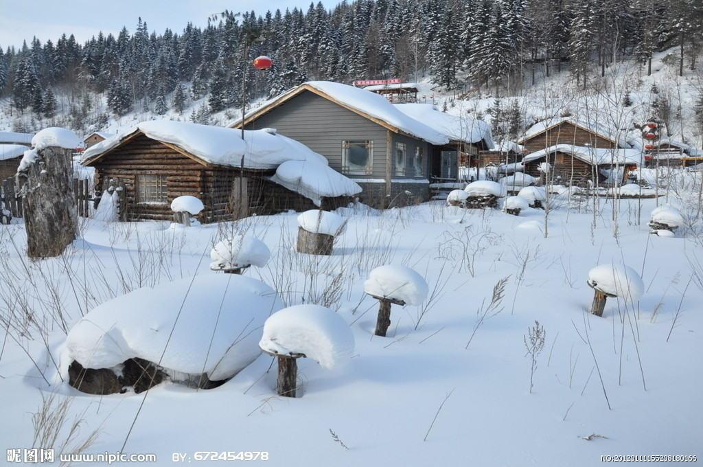 吉林-雾凇长廊-滑雪-长白山-雪乡-雪谷-哈尔滨B线纯玩
