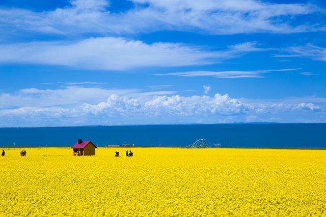 【可可西里+三江源】 穿越大西北秘境:青海湖-茶卡盐湖-水上雅丹-可可西里-察尔汗盐湖-塔尔寺,无人区大环线!