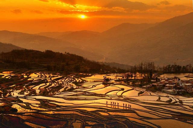 醉美秋冬,东川红土地、哈尼元阳梯田、普者黑七彩云南深度摄影体验之旅