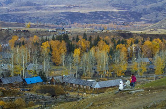 新疆 天山天池 喀纳斯 禾木 白哈巴 深度北疆体验之旅