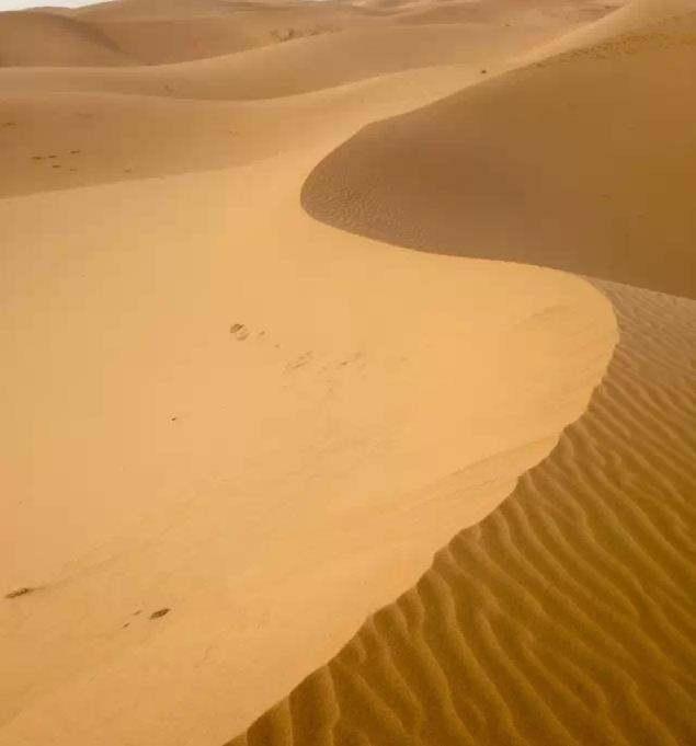 腾格里沙漠六湖穿越记