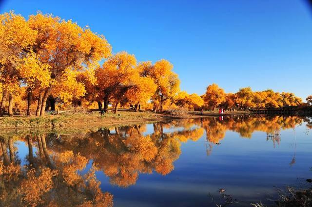 梦幻腾格里天鹅湖穿越,西部梦幻大峡谷,童话额济纳胡杨林深度摄影